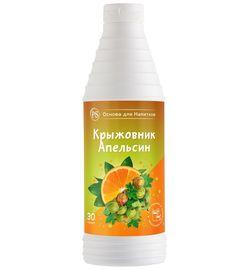 Основа для напитков Крыжовник-Апельсин ProffSyrup 1 кг